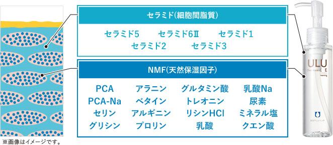 「セラミド」「NMF」配合