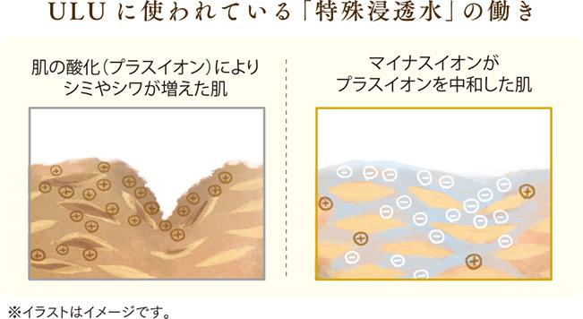 特殊浸透水の働き